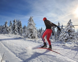 Tourism Whistler Scales New Heights with Bubblebox Continuous Improvement Program and Salesforce Marketing Cloud