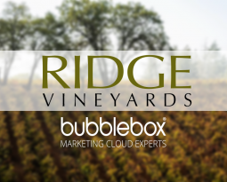 Ridge Vineyards' Email Marketing Gets Better with Age Using Salesforce Marketing Cloud and Bubblebox Training